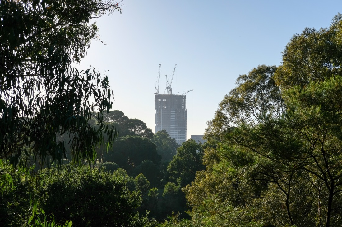 Paramatta - city of the future-7